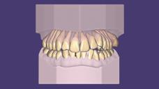 Ortodonti>>